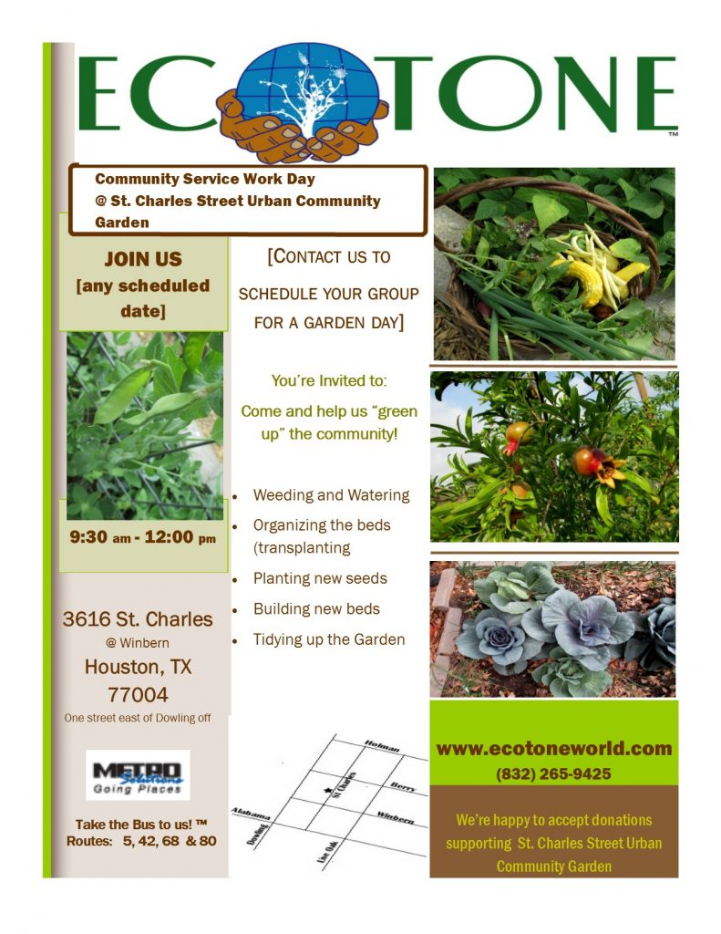 Garden Day Flyer - Draft
