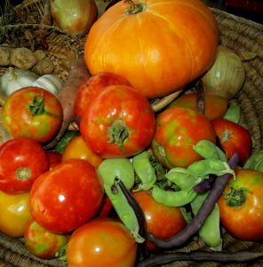 tomatoes-pumpkins-and-stuff-e