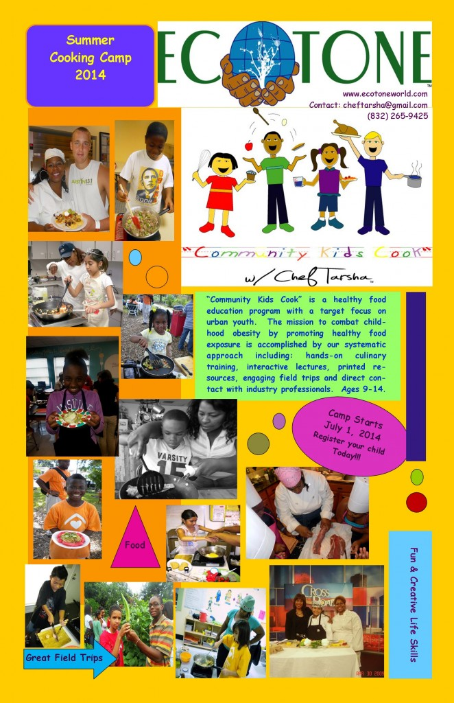 2014 Summer Camp Poster